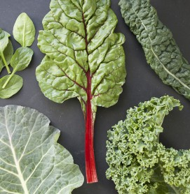 kale-chard-swiss chard-collard greens