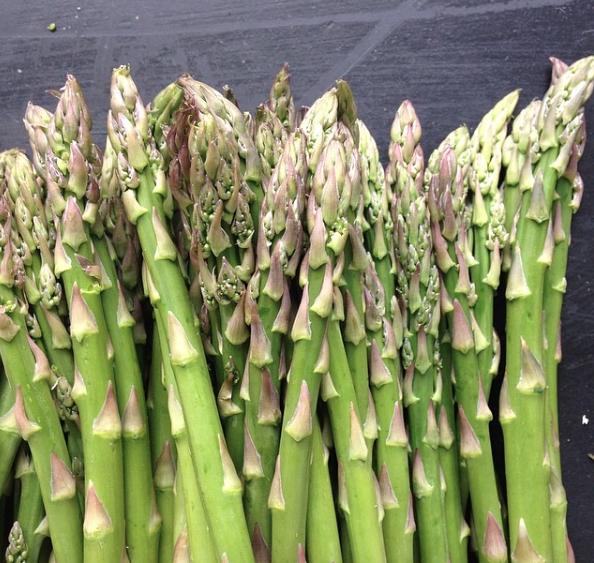 Asparagus Zoom